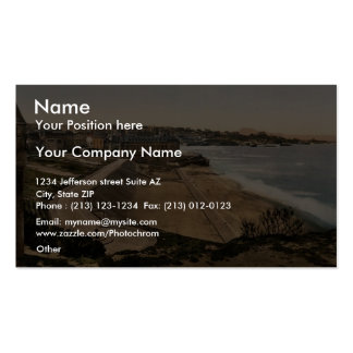 General view, Biarritz, Pyrenees, France vintage P Double-Sided Standard Business Cards (Pack Of 100)