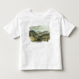 General View from the South and East Fronts of the T-shirt
