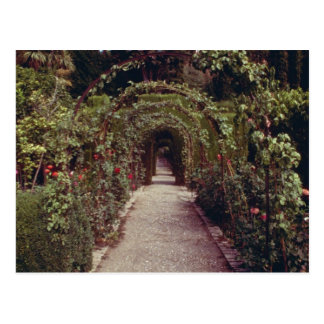Generalife blanco, flo de Alhambra, Granada, Españ Postales