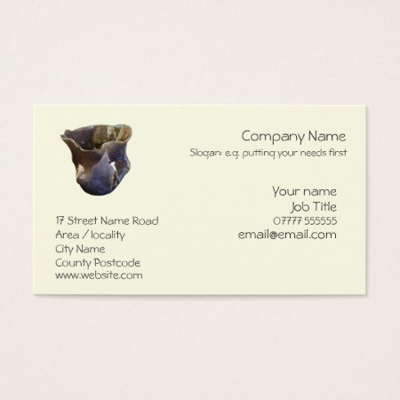 Generic business card template
