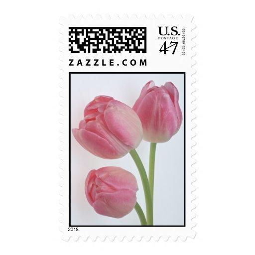 Generosidad 9 del jardín sellos postales