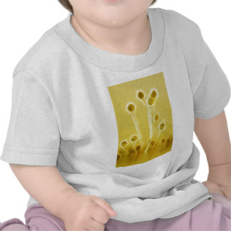Genes Reunited digital art T Shirts