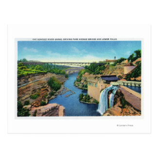 Genesee River Gorge, Park Avenue Bridge Post Card