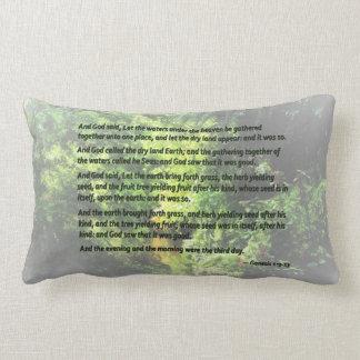 Genesis 1 9-13 ... let the dry land appear lumbar pillow