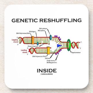 Genetic Reshuffling Inside Biology Geek Humor Drink Coaster
