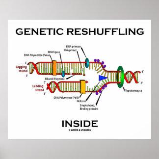 Genetic Reshuffling Inside Biology Geek Humor Poster
