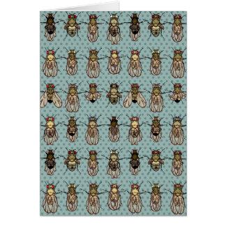 Genética de la mosca del vinagre de la Drosophila Tarjeta De Felicitación
