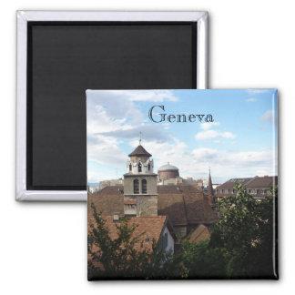 geneva 2 inch square magnet