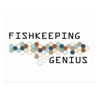 Genio de Fishkeeping Tarjetas Postales