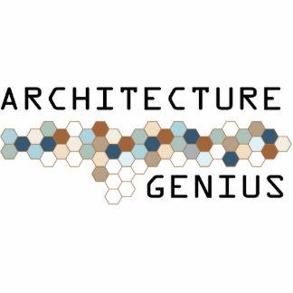 Genio de la arquitectura escultura fotografica