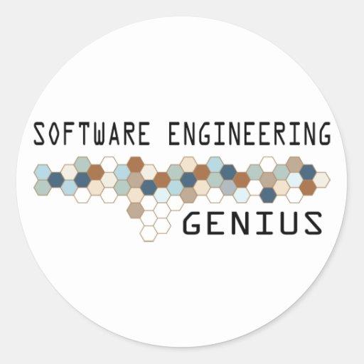 Genio de la ingeniería de programas informáticos pegatina redonda