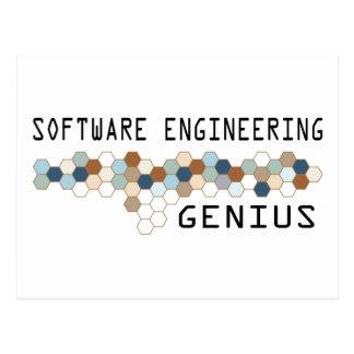 Genio de la ingeniería de programas informáticos postal