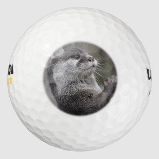 Genio de la nutria pack de pelotas de golf