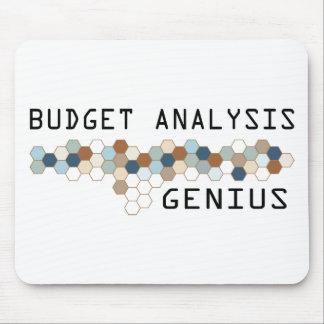 Genio del análisis del presupuesto tapetes de ratones