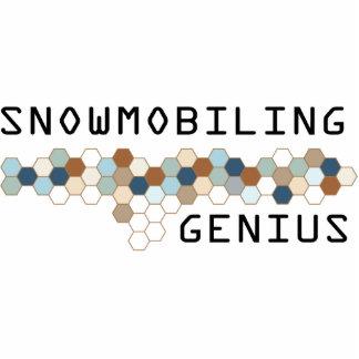Genio Snowmobiling Esculturas Fotográficas