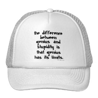 Genius and Stupidity Mesh Hats