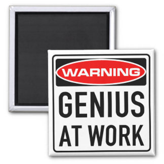 Genius At Work Funny Warning Road Sign Magnet