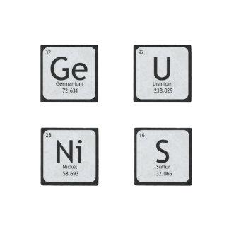 GeNiUS Set of Four Stone Magnets