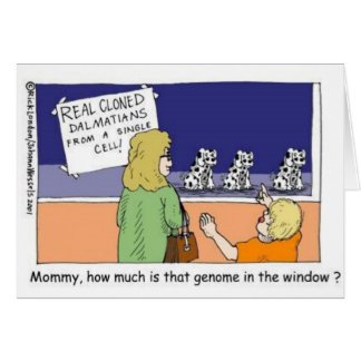 Genome In The Window Funny Dalmatian Gifts & Tees Card