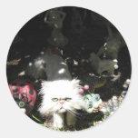 gente del gatito pegatinas redondas