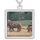 Gente simple del país de Amish en el cultivo con Collar Plateado