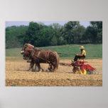 Gente simple del país de Amish en el cultivo con Poster