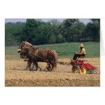 Gente simple del país de Amish en el cultivo con Tarjeta De Felicitación