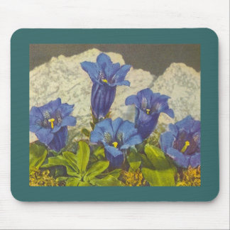 Gentian Flower Mouse Pad