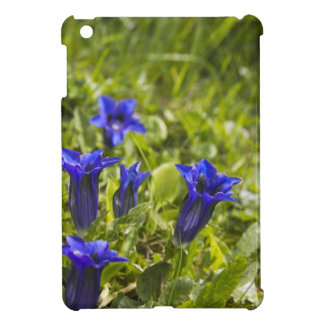Gentian flowers more cover iPad mini cases