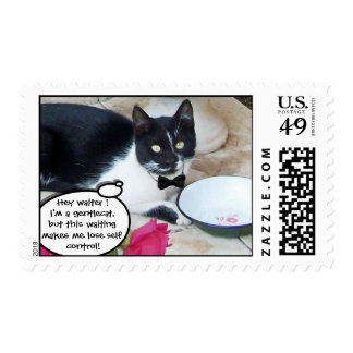 GENTLE CAT IN THE RESTAURANT Happy Birthday Postage Stamp