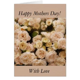 Gentle Cream Roses Greeting Cards