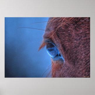 Gentle Eye of a Loving Sorrel Horse Poster