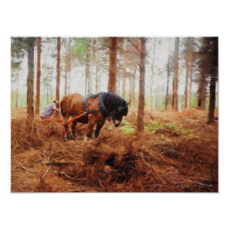 Gentle Giant - Draft Horse at Work in the Forest Poster
