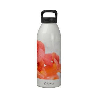 Gentle orange flowers reusable water bottles