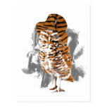 gentle-owl post card