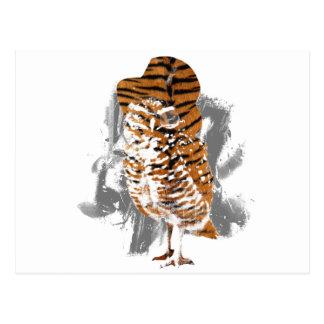 gentle-owl postcard