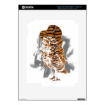 gentle-owl skin for iPad 3