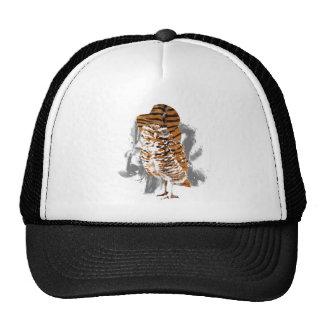 gentle-owl trucker hat