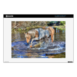 """Gentle Palomino Pinto Stallion Playing in Pond 13"""" Laptop Skins"""