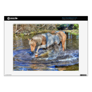 Gentle Palomino Pinto Stallion Playing in Pond Acer Chromebook Decals