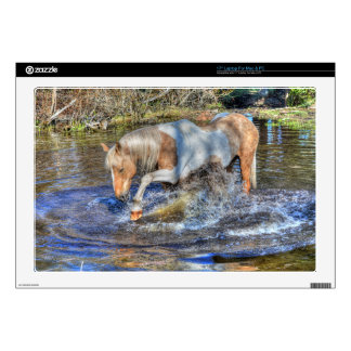 Gentle Palomino Pinto Stallion Playing in Pond Decal For Laptop