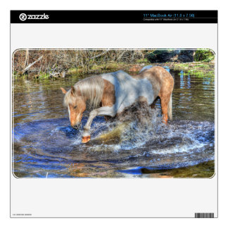 Gentle Palomino Pinto Stallion Playing in Pond MacBook Decal