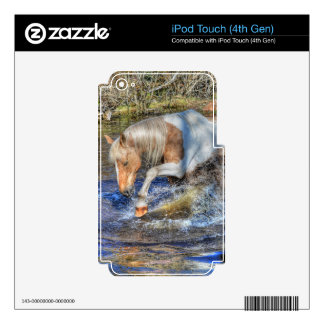 Gentle Palomino Pinto Stallion Playing in Pond Skins For iPod Touch 4G