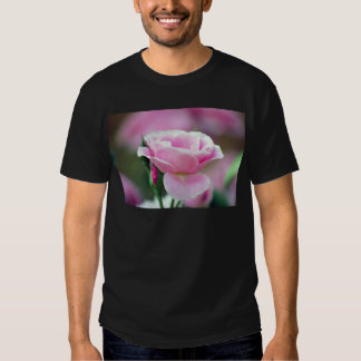 Gentle pink rose and rose buds shirt