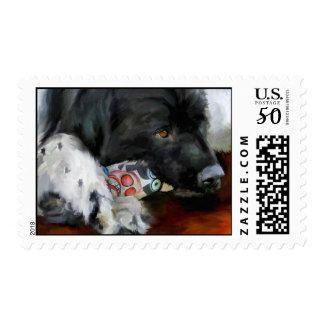 Gentle Soul (Newfoundland Dog) Art Stamps