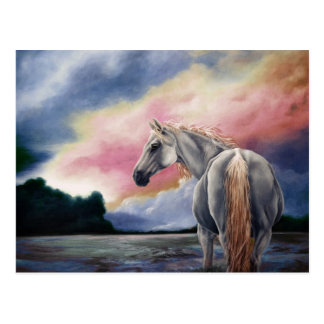 Gentle Spirit Sunrise Postcard