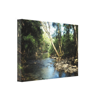 Gentle Stream Stretched Canvas Prints