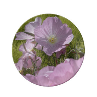 Gentle summer pink flowers photography Plate