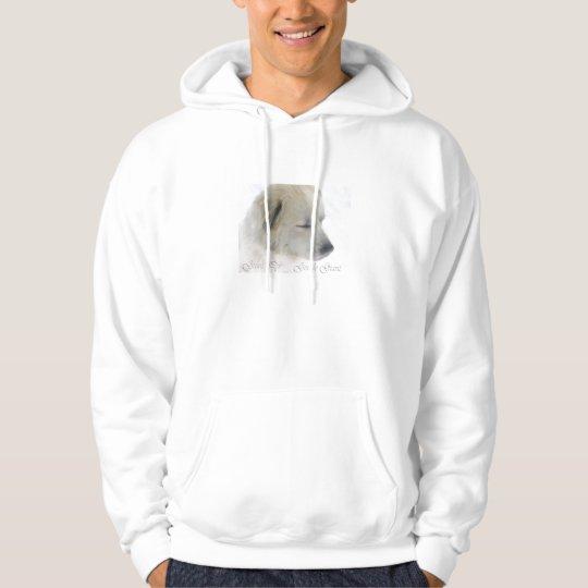 gentlegiant hoodie