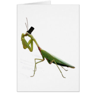 Gentleman Mantis Card